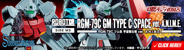 bnr_rs_gm_typec_space_600x163
