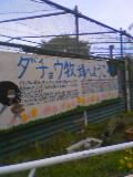 20050423ダチョウ1