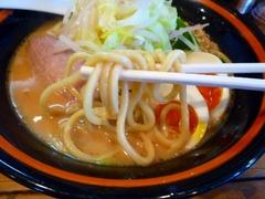 万年青 太麺