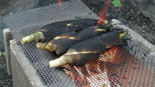 味来とうもろこしを直火で焼く