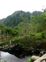 湿地帯の池