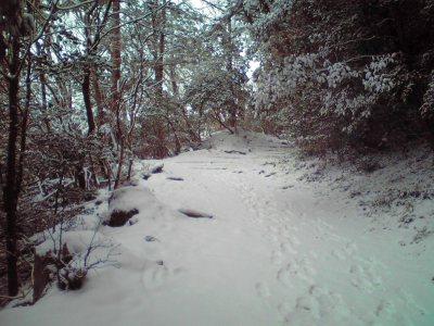 ATG3_気持ちのいい雪景色