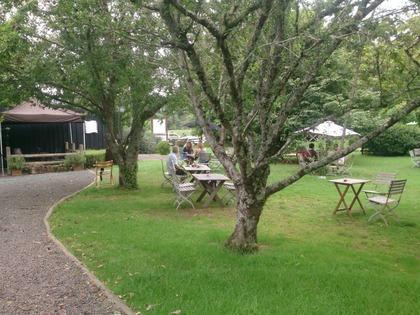 Cafe Garden table