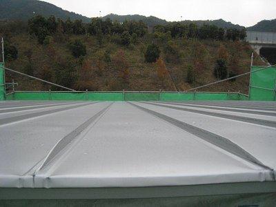 立てハゼ葺き屋根の水上部081127