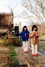 大王わさび園にて(1992年11月)