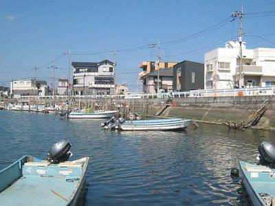 沖洲川から見た「眉山を臨む家」