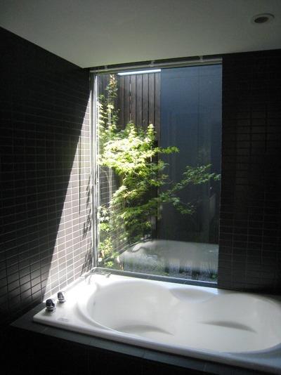 浴室から光庭を見る