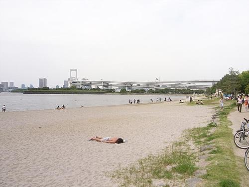 東京湾マラソン 10