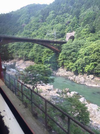 2017京都トロッコ1