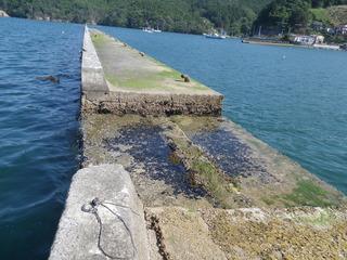 20120627_004雄勝水浜