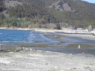 20120118_020牡鹿半島桃浦
