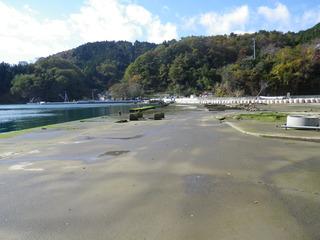 20111116_013女川竹浦