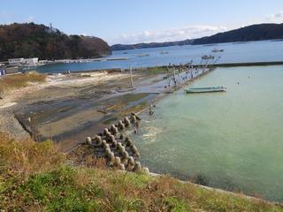 20121205_037女川指ヶ浜