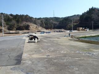 20130404_037女川塚浜