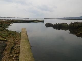 20120328_032牡鹿半島表浜
