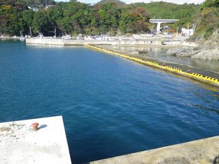 20111109_038十三浜大指