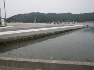 20150715_063女川指ヶ浜