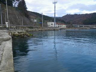 20111206_012雄勝分浜