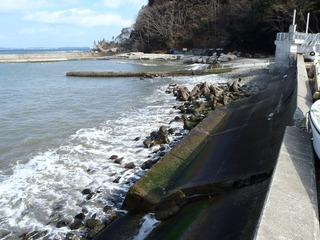 20130214_042旧志津川町南部滝浜