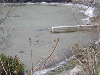 20130425_001牡鹿半島蛤浜