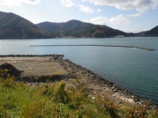 20111116_006女川石浜