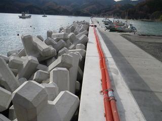 20121205_039女川指ヶ浜