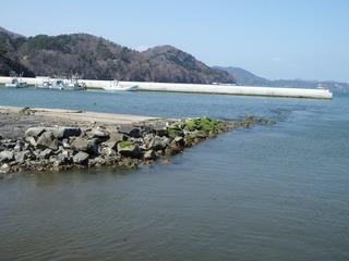 20130404_023女川野々浜