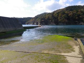 20111116_016女川竹浦