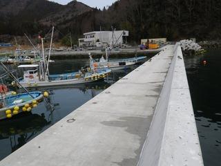 20130227_032女川指ヶ浜