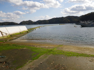 20111116_023女川尾浦
