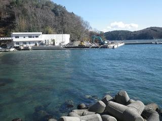 20150305_024女川指ヶ浜