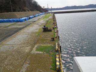 20130227_005女川桐ヶ崎