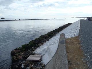 20111210_045鳴瀬川河口