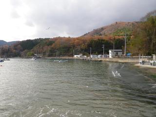 20121205_041女川指ヶ浜