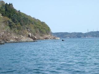 20110504_055女川石浜