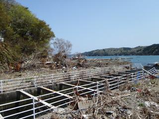 20110504_025女川御前浜