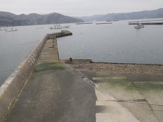 20150226_019女川町塚浜