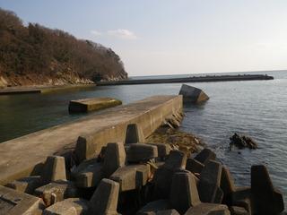 20120328_089牡鹿半島蛤浜