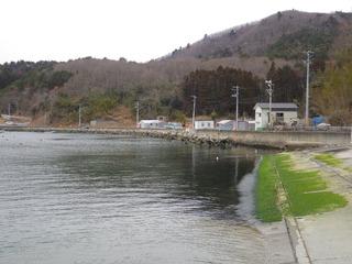 20130227_030女川指ヶ浜