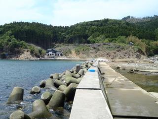 20110608_023牡鹿半島桃浦