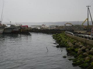 20130220_109牡鹿半島鮎川
