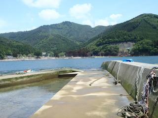 20110608_025牡鹿半島桃浦
