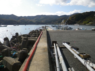 20111116_037女川指ヶ浜東堤防