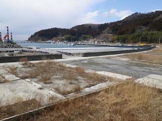 20130220_039牡鹿半島桃浦