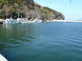 20130404_007女川横浦