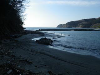 20120118_015牡鹿半島蛤浜