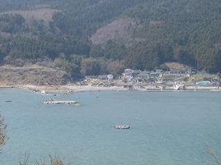20110413_4130141牡鹿半島桃浦