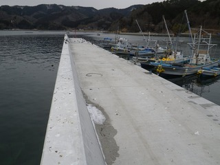 20130227_031女川指ヶ浜
