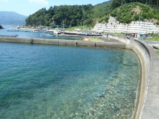 20120822_065雄勝小島
