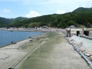 20110608_031牡鹿半島桃浦